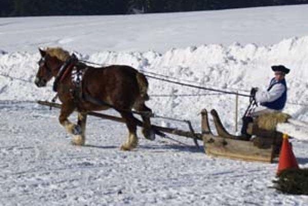 Na štart nastúpilo 14 súťažiacich, z ktorých v diváckej súťaži o najkrajšie ustrojeného koňa a furmana zvíťazil 13-ročný Marek Forgáč, oblečený v kroji z Lúčok pri Ružomberku.