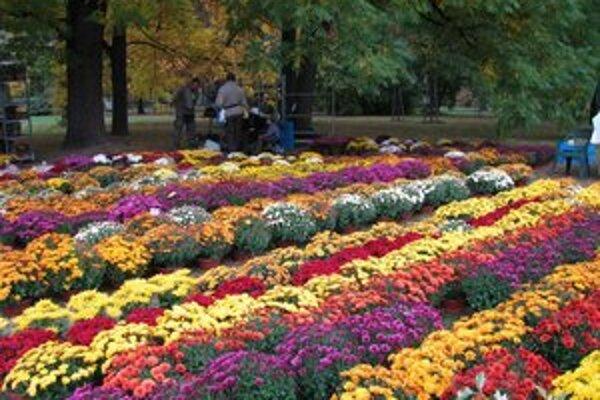 Pastva pre oči na výstave kvetov. Vychutnajte si ju aj vy, stačí si objednať do piatku 12.h predplatné MY Liptovské noviny.
