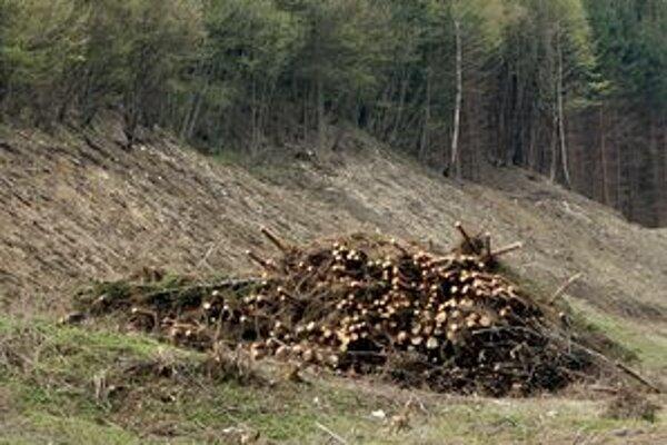 Horská záchranná služba zvlášť upozorňuje na zvýšenú opatrnosť pri prechode lesných porastov postihnutých lykožrútovou kalamitou.