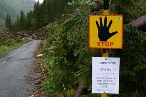 Vo viacerých dolinách sú cez turistické chodníky zvyšky popadaných stromov z lavínovej kalamity.