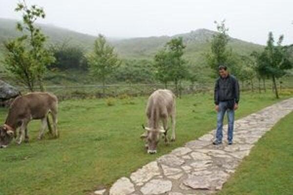 Gazda sa s kravami lúčil ťažko, veď denne sa o ne staral. Netušil, že posledná odíde  kruto pred  jeho očami.