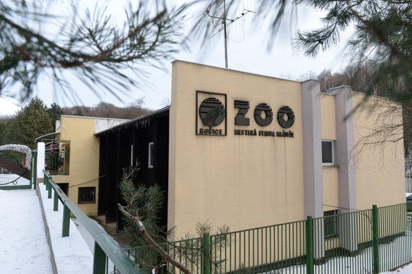 Zoologická záhrada Košice.