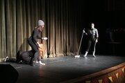 Na divadelnom festivale predviedli žiaci z bilingválnych gymnázií znalosti i talent.