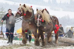 Súhra koní a ich pána.