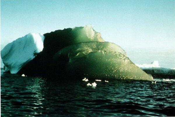 Zelený ľadovec vo Weddellovom mori pri Antarktíde v roku 1985.