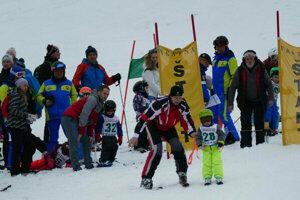 Na snímke pretekári počas podujatia Jánošíkova valaštička 2019 v lyžiarskom stredisku Paseky vo Vrátnej doline.