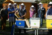 V minulosti podporili aj projekt Včely vmeste.