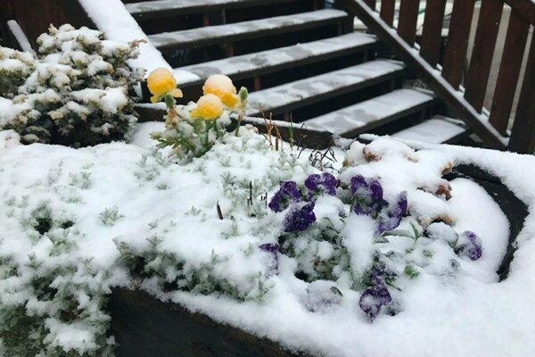 Na Inoveckej chate napadla drobná vrstva snehu.
