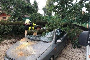 V Pravenci, časti kolónia, spadol strom na auto.
