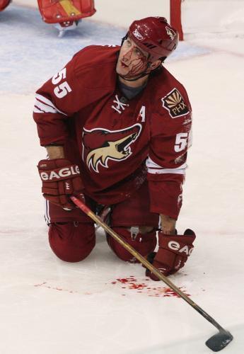 hokej-krv_sitaap.jpg