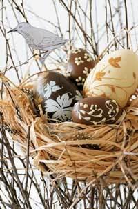 vajcia.jpg