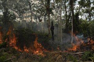 Požiar vo vyrúbanej časti džungle amazonského pralesa na území Brazílie.