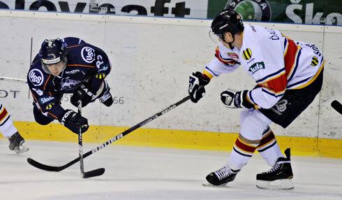 hokej_490.jpg