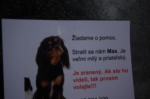 max_490.jpg