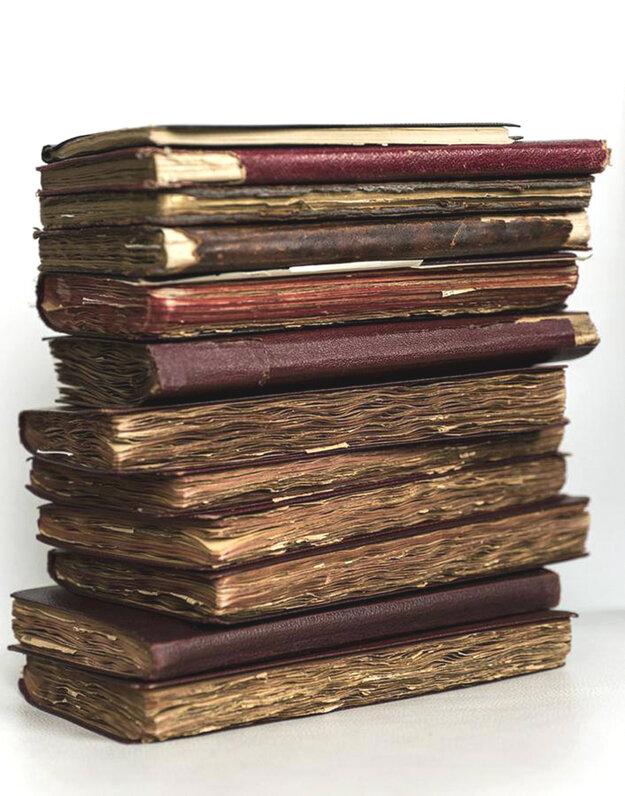 Denníky Astrid Lindgrenovej vyvolali nedávno senzáciu.