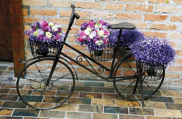 rower_rose_600.jpeg