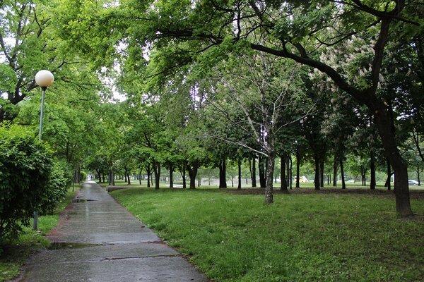 chodniky-2s_r2179_res.jpg