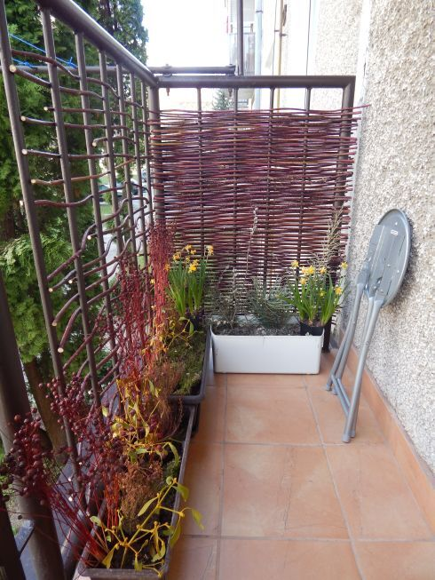 balkon_r923.jpg