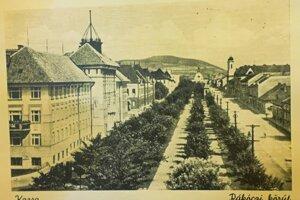 Pohľad na štvorradovú stromovú aleju na Moyzesovej ulici v roku 1938.