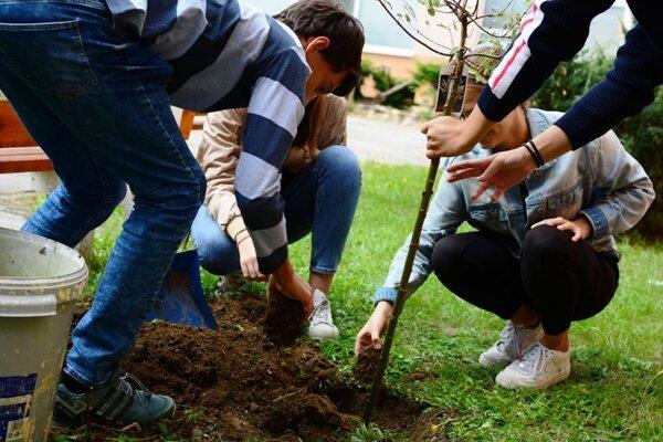 Sedenie stromčekov v ZŠ Mládežnícka Púchov počas ekoštrajku.