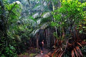 Park a džungľa priamo v centre mesta