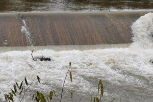 Hasiči chceli zvera vytiahnuť, musia však počkať, kým opadne voda.