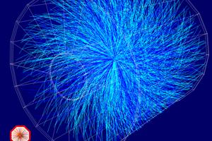 Takto vyzerajú dáta zo zrážky častíc v experimente Alice. Vedci nepozorujú priamo zrážku ale častice, ktoré z nej vylietavajú.