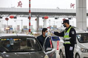 Nákaza sa z Číny rozšírila aj do niekoľkých ďalších štátov.