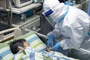 Koronavírusom sa už nakazilo viac ako 1300 ľudí.