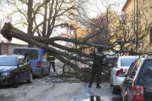 Spadnutý strom na Južnej triede v Košiciach poškodil aj autá