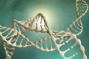 Vizualizácia 3D modelu DNA.
