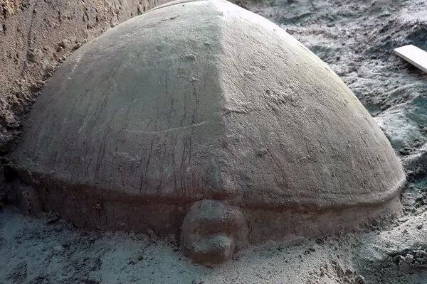 Veľká socha korytnačky v komplexe Angkór Vat.