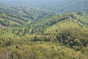Pohľad na Poloniny z výhľadovej plošiny v blízkosti vrcholu Jarabá skala.