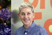 Komička Ellen DeGeneres.