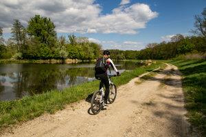 Moravská cyklistická cesta