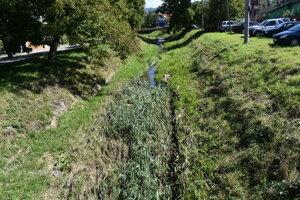Soľný potok treba vyčistiť.