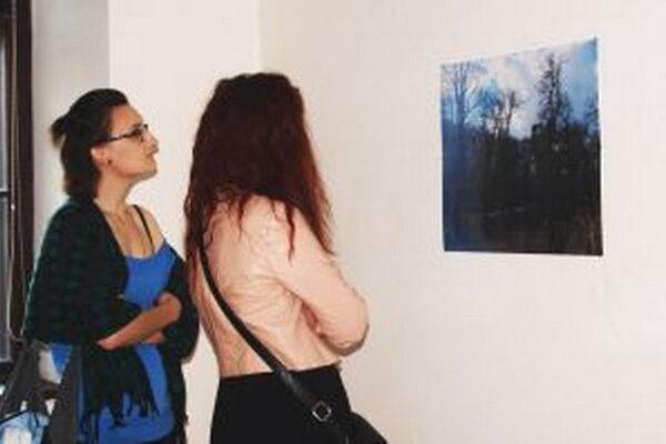 Výstava v Galérii mladých potrvá do 14. júna.