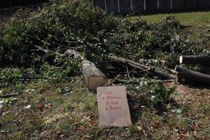 K odpíleným stromom aktivisti položili kartóny snápismi vyjadrujúcimi nesúhlas svýrubom zelene.