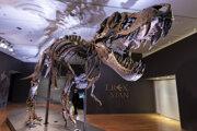 Odliatky kostry tyranosaura Stana boli od 90. rokov vystavené vo viacerých múzeách v Európe. Tentoraz však predali vzácnu originálnu kostru, ktorá významne prispela k poznaniu o tyranosauroch.