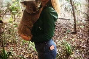 Vysnívaná fotografia s koalou v austrálskom Brisbane.