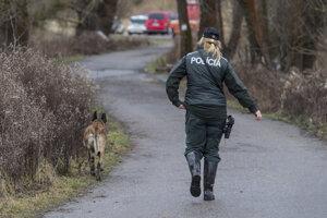 Tínedžerky hľadá polícia.
