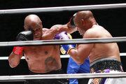 Mike Tyson (vľavo) v zápase s Royom Jonesom Jr.
