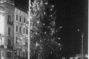 Prvý charitatívny vianočný strom sa Těsnohlídkovou zásluhou rozžiaril v Brne v roku 1924.