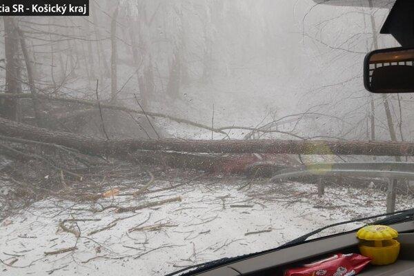 Popadané stromy na ceste medzi Gemerskou Polomou a Hnilcom.