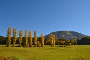 Topole pod Blatnickým hradom patria knajobľúbenejším miestom Anny Thomkovej vTurci.