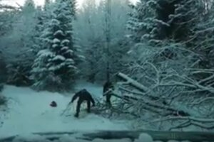 Lesníci pred časom odstraňovali prekážky na tratiach.