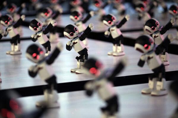 Desiatky robotických postavičiek Robi, ktoré si mohli zostrojiť čitatelia japonského časopisu DIY. 34-centimetrov vysoký a jeden kilogram vážiaci robot Robi rozpoznáva vyše 200 japonských fráz, dokáže chodiť, tancovať, behať a hrať futbal.