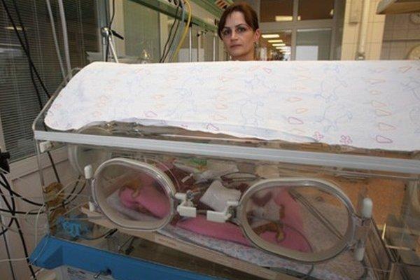 Miško bol po narodení v inkubátore.