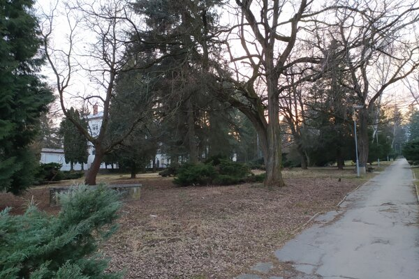 Park za nemocnicou v Handlovej.