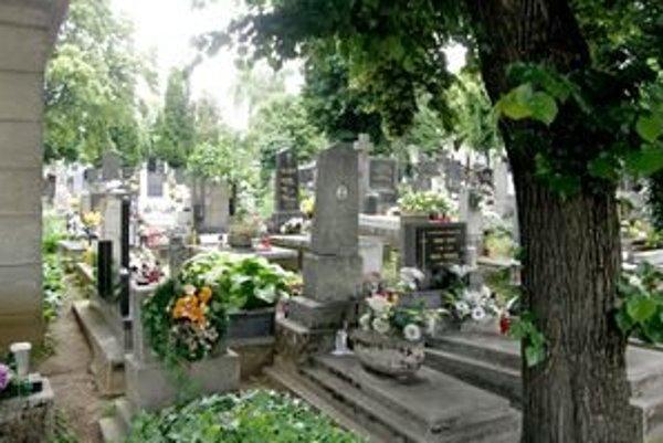 Nitriansky mestský cintorín je preplnený, nové hrobové miesta tu nie sú.